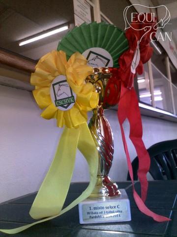 Summeflash mezinárodní šampionát